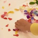 【開催報告】夏休みワークショップ「お花を分解して観察しよう!花びらアートにも挑戦!」